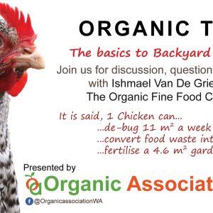 The basics to Backyard Chickens!