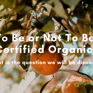 To Be or Not To Be Certified Organic?